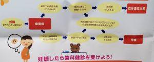 妊娠中の歯科治療③